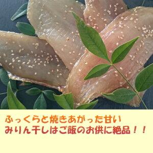【ふるさと納税】RY019室戸 漁師の贅沢フグみりん干し