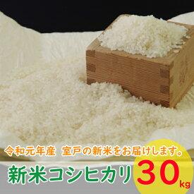 【ふるさと納税】TA002室戸産新米コシヒカリ30kg