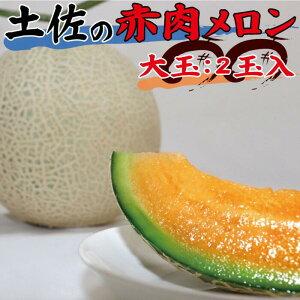 【4月・5月発送】土佐の赤肉メロン(大玉:2玉入)合計約4kg