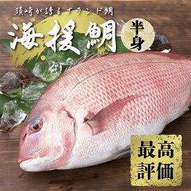 【ふるさと納税】最高峰評価のブランド鯛「海援鯛」半身フィーレセット マダイ 鯛 タイ 魚 魚介類 醤油 セット つま 大葉 刺身 すぐに食べれる
