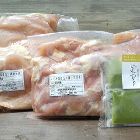 【ふるさと納税】国産「四万十鶏」大容量2kg!と葉にんにくぬたセット 唐揚げ 鶏