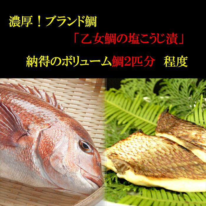 【ふるさと納税】濃厚!ブランド鯛「乙女鯛の塩こうじ漬」