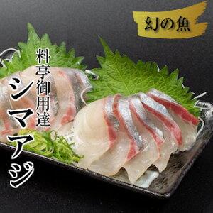 【ふるさと納税】縞鯵(シマアジ)お刺身セット 産地直送 送料無料