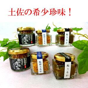 【ふるさと納税】おつまみ 鮎のうるか・須崎市産からすみフレークセット 希少珍味セット
