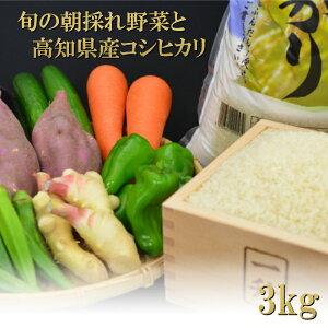 【ふるさと納税】とれたて新鮮!旬の朝採れ野菜と高知県産コシヒカリ3kgセット