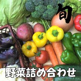 【ふるさと納税】訳あり 定期便 旬な野菜の詰め合わせ
