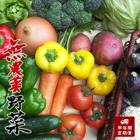 【ふるさと納税】6ヶ月定期便 無農薬お野菜セット(13〜14品前後)
