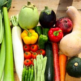 【ふるさと納税】【限定400セット】年末だけ!毎月の野菜便り『高知の野菜12回お届け便』♪♪ お楽しみ