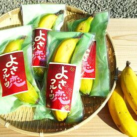 【ふるさと納税】バナナ 皮ごと美味しいバナナ 純国産 有機栽培