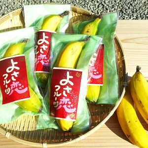 【ふるさと納税】高知初!! 純国産 有機栽培 皮ごと食べられるバナナ