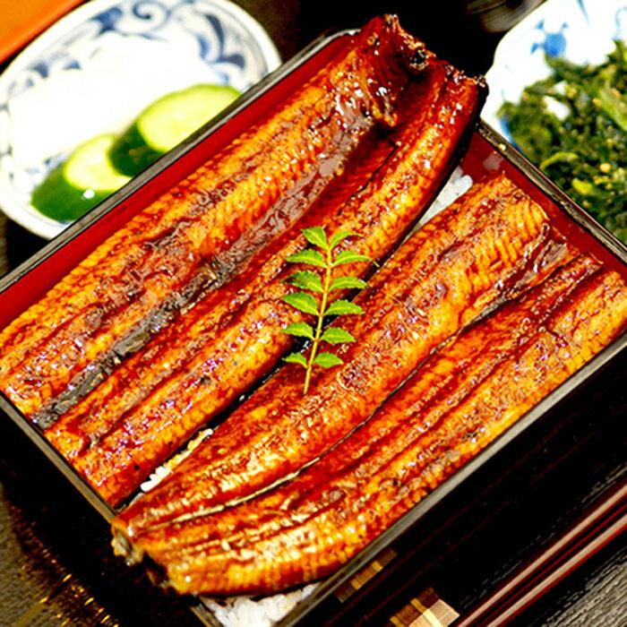 【ふるさと納税】肉厚ふっくら美味しい 特大うなぎ蒲焼き 3尾セット