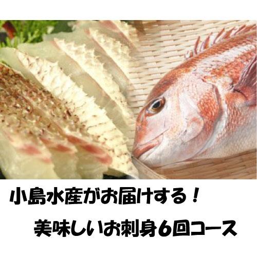 【ふるさと納税】小島水産がお届けする!美味しいお刺身6回コース