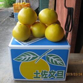 【ふるさと納税】まる博農園の土佐文旦 10kg(家庭用)