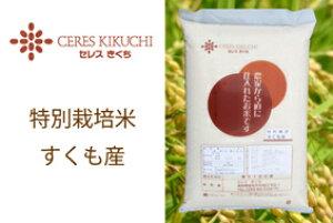 【ふるさと納税】【定期便】特別栽培すくも米ヒノヒカリ10kg×6回お届け