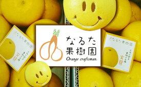 【ふるさと納税】成田果樹園の土佐文旦7kg家庭用