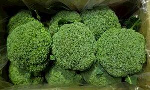 【ふるさと納税】ふくい農園のおいしいブロッコリー8個