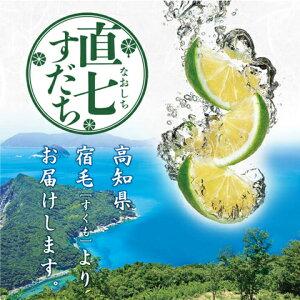 【ふるさと納税】土佐料理司 直七すだち果汁100ml×12本