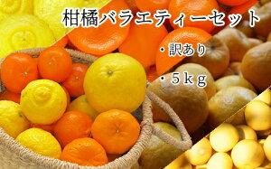 【ふるさと納税】訳あり柑橘バラエティーセット5kg【L-43】