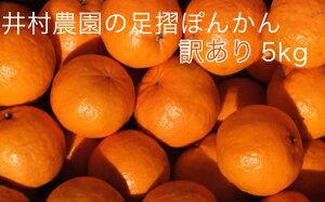 【ふるさと納税】【訳あり】井村農園の足摺ぽんかん(5kg)【AE-15】