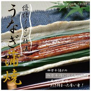【ふるさと納税】21-006.四万十川優化イオンうなぎ蒲焼2尾(ボイル肝、たれ付き)