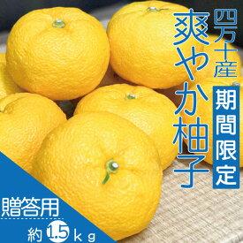 【ふるさと納税】20-738.【期間限定・早期受付】 四万十産 爽やか柚子(贈答用)約1.5kg