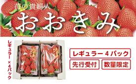 【ふるさと納税】20-773.【先行予約・数量限定】苺の貴婦人おおきみ  レギュラー4パック