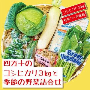【ふるさと納税】20-786.【数量限定】四万十のコシヒカリ3kgと季節の野菜詰合せ
