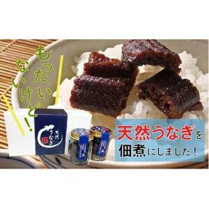 【ふるさと納税】19-509.希少な天然うなぎの佃煮2瓶セット