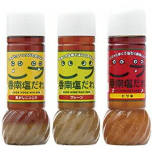 【ふるさと納税】生産量日本一のニラをおいしく!香南塩だれ3本セット【送料無料】ご当地グルメ 炒め物 焼きそば
