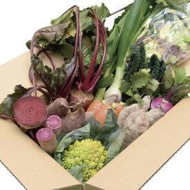【ふるさと納税】生産者の想いをのせて旬のモノをお届けします! 香南市のお野菜詰合せB【送料無料】8品 ジュース B-246