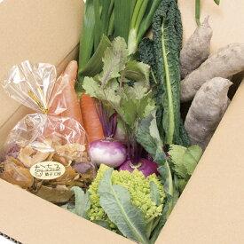 【ふるさと納税】生産者の想いをのせて旬のモノをお届けします! ペットのおやつ+香南市のお野菜詰合せB【送料無料】6品 安心安全 ペット用 B-247