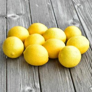 【ふるさと納税】人気ローズガーデンのフレッシュレモン1.3Kg送料無料 ギフト ラッピング のし 贈り物 配送時期により色が変わります A-331