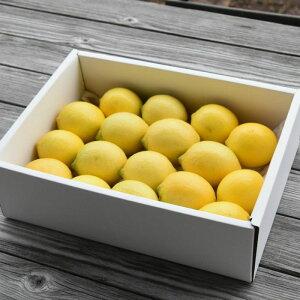 【ふるさと納税】人気ローズガーデンのフレッシュレモン2.5kg 送料無料 数量限定 ギフト ラッピング のし 青レモン 黄色レモン 配送時期により色異なります B-311