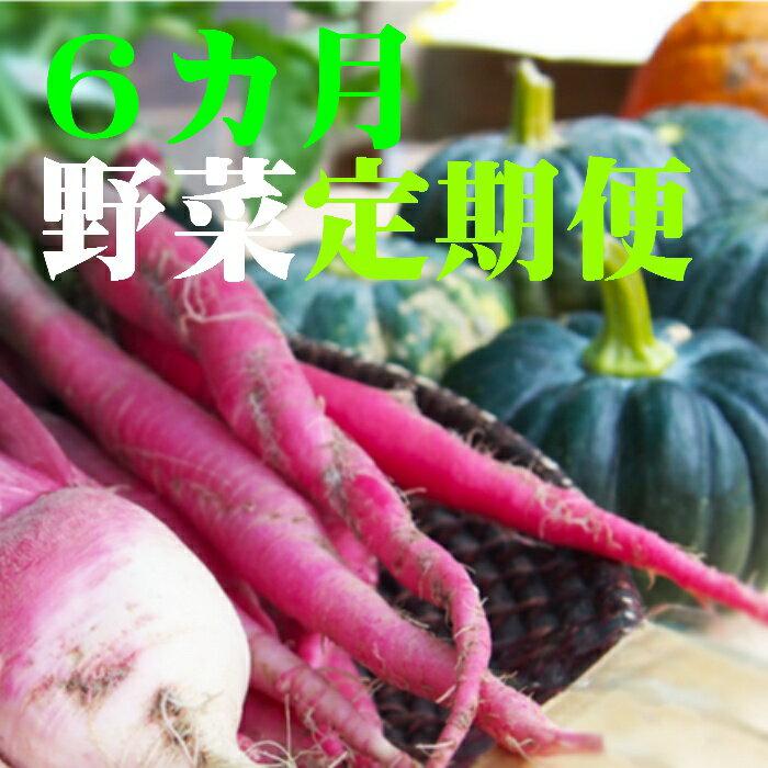 【ふるさと納税】野菜★6カ月定期便 香南市のお野菜詰め合わせコース