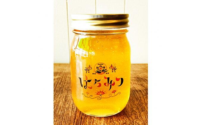 【ふるさと納税】【最高蜂】高知県産天然はちみつ 500g 【加工品】
