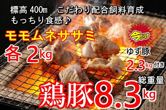 【ふるさと納税】sptoyu003 今だけ!こだわり配合飼料育成!もっちり食感♪米ヶ岡鶏6kg&ゆず豚2.3kg(※鶏豚別配送) 寄付額10,000円