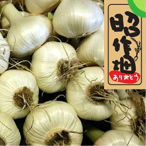 【ふるさと納税】31M07a 【無農薬】 旬の土付き新にんにくセット(1kg程度)