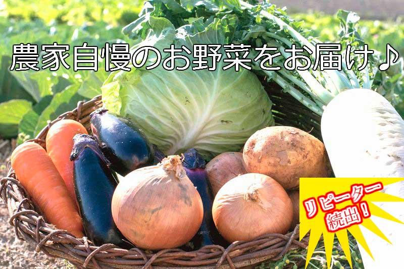 【ふるさと納税】ve003 新鮮!シャキシャキ!旬の野菜詰め合わせコース(年12回 毎月発送!!) 寄付額45,000円