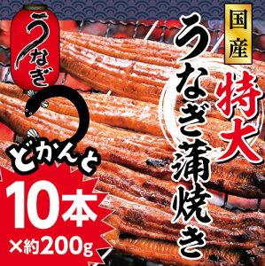 【ふるさと納税】ra005 ドカンと10本!ふんわり、...