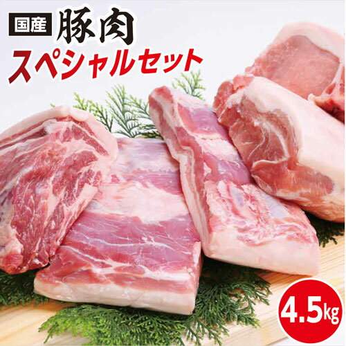 【ふるさと納税】kan081 ドカンと4.5kg!高知県産豚肉スペシャルセット 寄付額20,000円