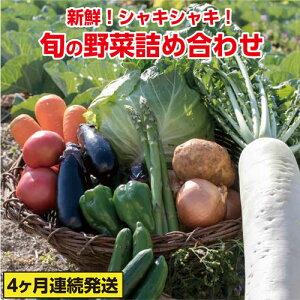 【ふるさと納税】31ve002c 旬の野菜詰め合わせコース(4ヶ月連続発送!!)