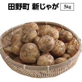 【ふるさと納税】四国一小さな町のじゃがいも。高知県田野町の大野台地で採れた新じゃが 5Kg