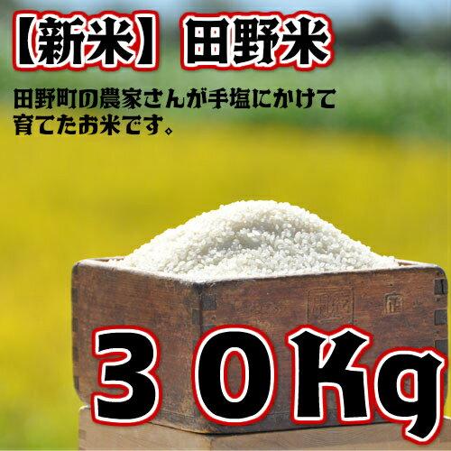 【ふるさと納税】平成30年産 田野米 30Kg 高知県田野町の農家さんが手塩にかけて育てた新米です。