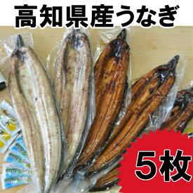 【ふるさと納税】高知県産うなぎの蒲焼き3枚 白焼き2枚 特製かば焼きのタレ 山椒 付き