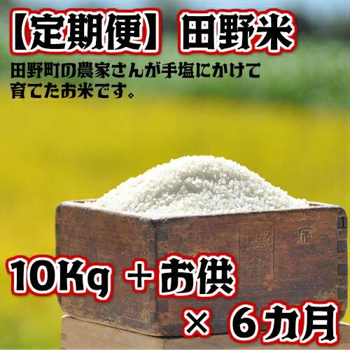 【ふるさと納税】定期便 平成30年産 田野米10Kg+ご飯のお供×6回(10月から3月毎月届きます) 高知県田野町の農家さんが手塩にかけて育てた新米です。