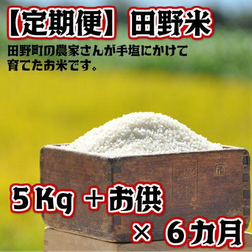 【ふるさと納税】定期便 平成30年産 田野米5Kg+ご飯のお供×6回(10月から3月毎月届きます) 高知県田野町の農家さんが手塩にかけて育てた新米です。