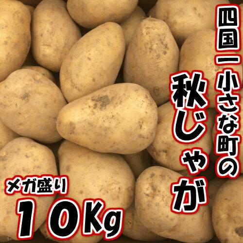 【ふるさと納税】四国一小さな町のじゃがいも。高知県田野町の大野台地で採れた秋じゃが 10Kg