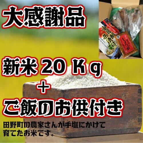 【ふるさと納税】大感謝品 平成29年産田野米 20Kg+ご飯のお供(干物や万能しょうが等)