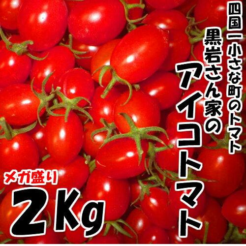 【ふるさと納税】四国一小さな町のトマト。高知県田野町で大事に育てられた大人気のアイコトマト2Kgです