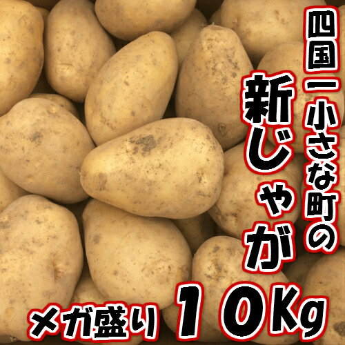 【ふるさと納税】5月発送!四国一小さな町のじゃがいも。高知県田野町の大野台地で採れた新じゃが 10Kg